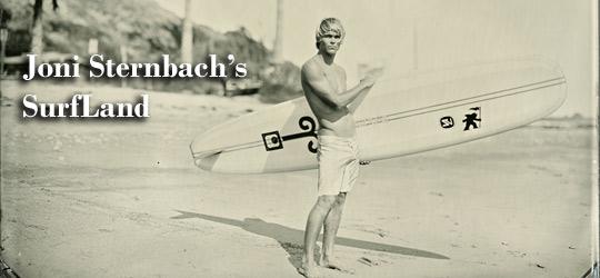 Joni Sternbach's SurfLand 1
