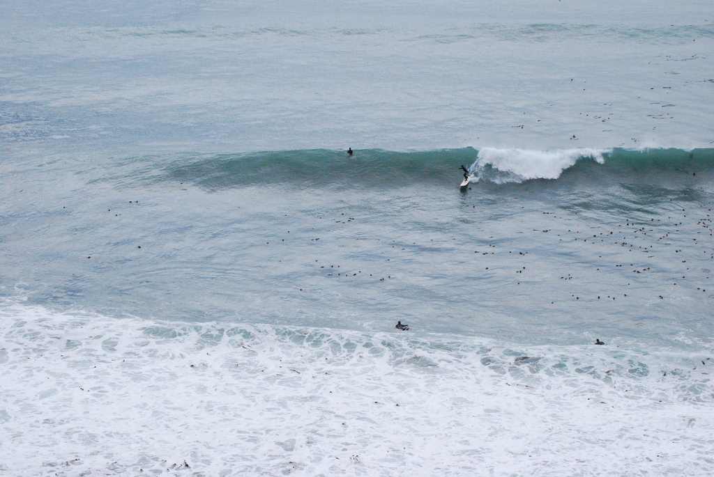 Wave Hunting in Big Sur 7