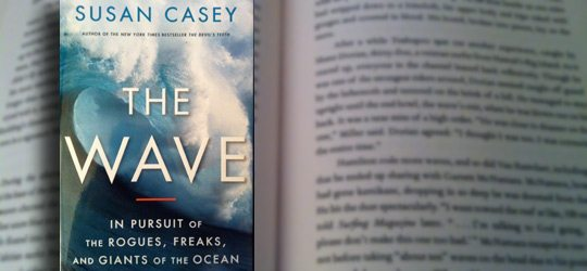 The Wave - Book Review 1