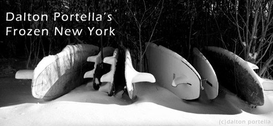 Dalton Portella's Frozen New York Surf 1