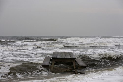 Dalton Portella's Frozen New York Surf 8
